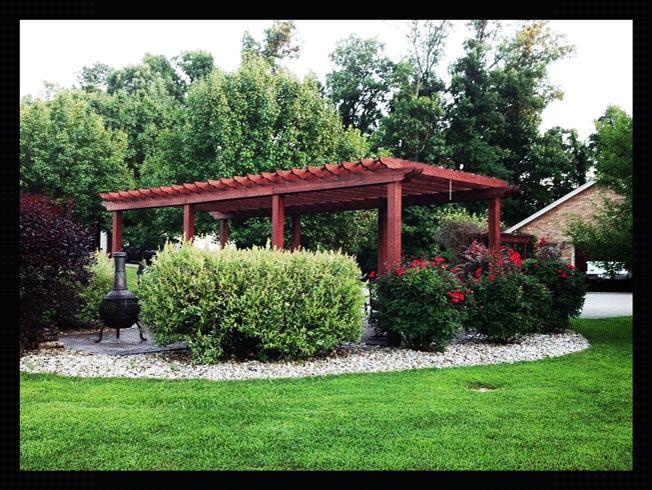 The design of a pergola in the back yard to off set the surroundings!